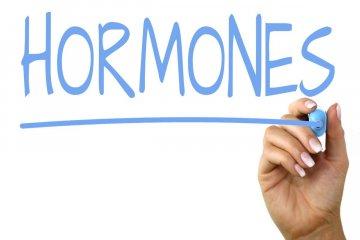 Mit okoz a túl sok inzulin a női nemi hormonok szintjében?