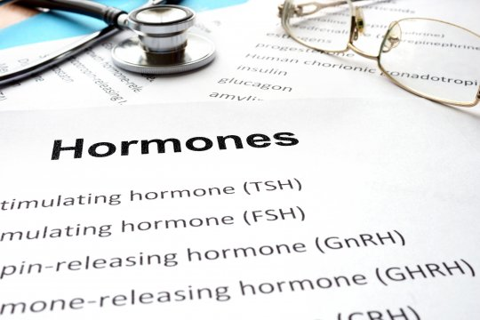 Természetes, vagy mesterséges hormonok?