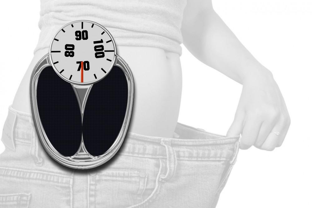 az inzulin növény a fogyásban szolgál